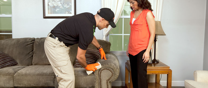 Denver, CO carpet upholstery cleaning