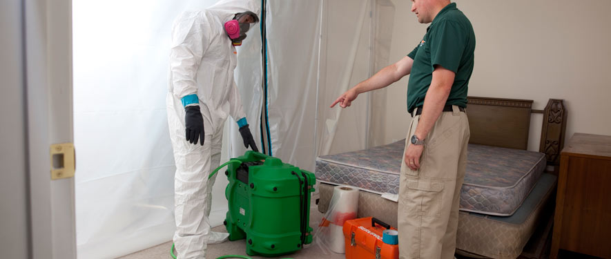 Denver, CO mold removal process